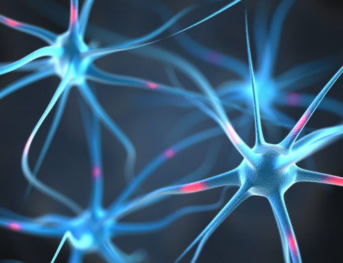 Link Discovered Between BMI and Brain Function