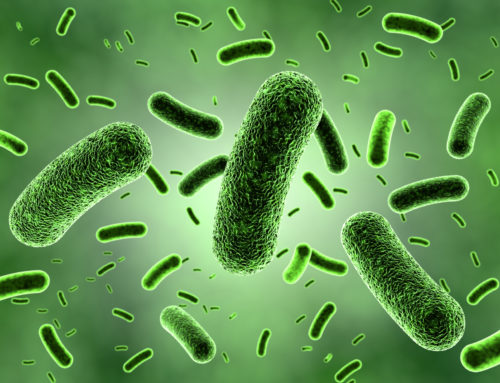 New Tuberculosis Treatment Target Identified